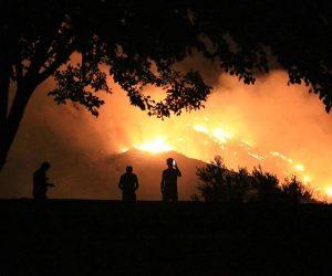 Orman Genel Müdürlüğü yangınların yüzde 88'inin insan kaynaklı olduğuna dikkati çekti