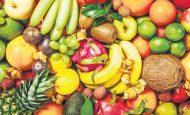 Hangi Meyve Ne Zaman Ekilir?