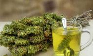 Dağ Çayının Faydaları Nelerdir ?